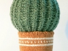kaktus2_